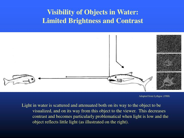 Visibility of Objects in Water: