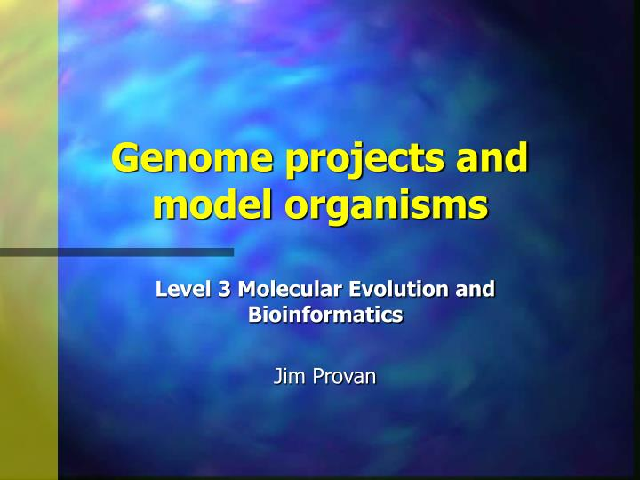 genome projects and model organisms n.