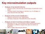 key microsimulation outputs