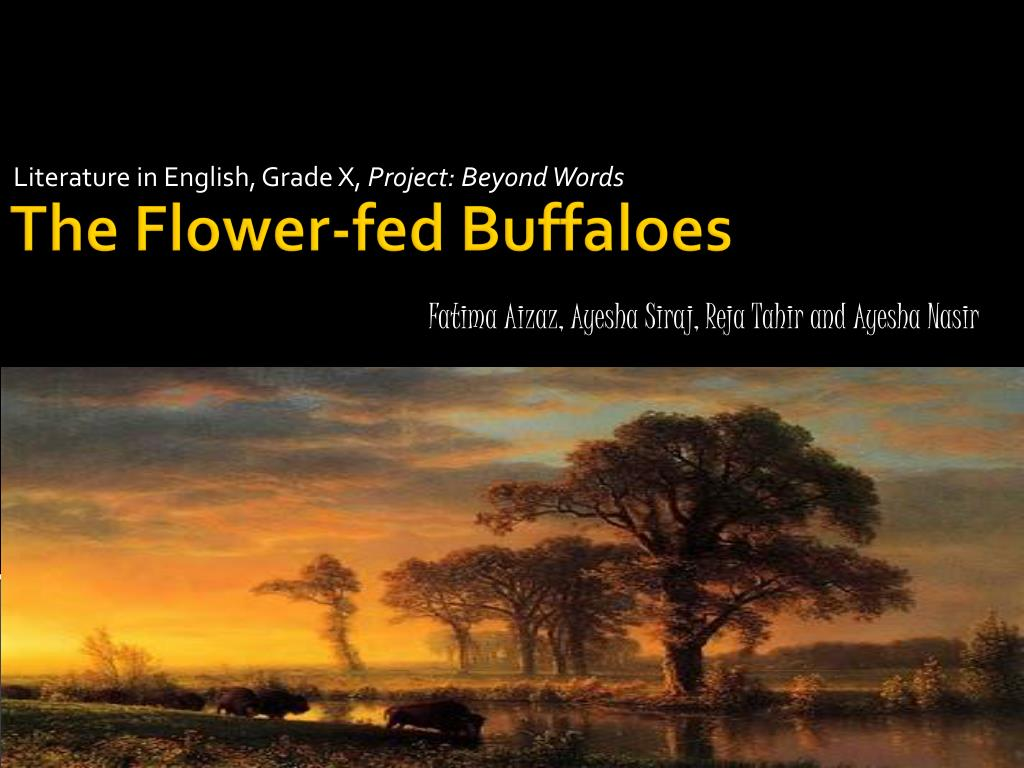 flower fed buffaloes nature theme poem Here is the poem: identity by julio noboa let them be as flowers always watered, fed, guarded, admired, but harnessed to a pot of dirt i&#39d rather be a tall, ugly weed, clinging on cliffs, like an eagle (5) wind-wavering above high, jagged rocks.