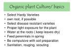 organic plant culture basics