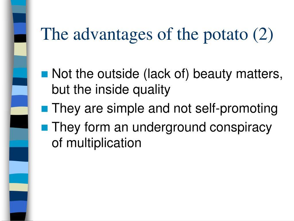 The advantages of the potato (2)