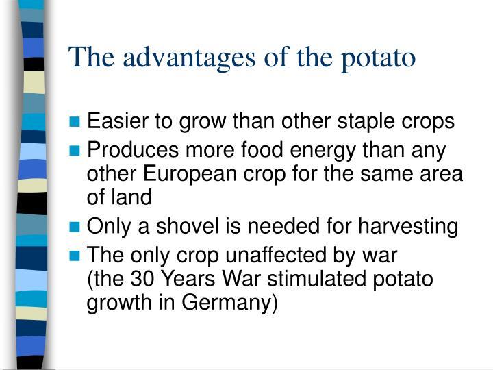 The advantages of the potato