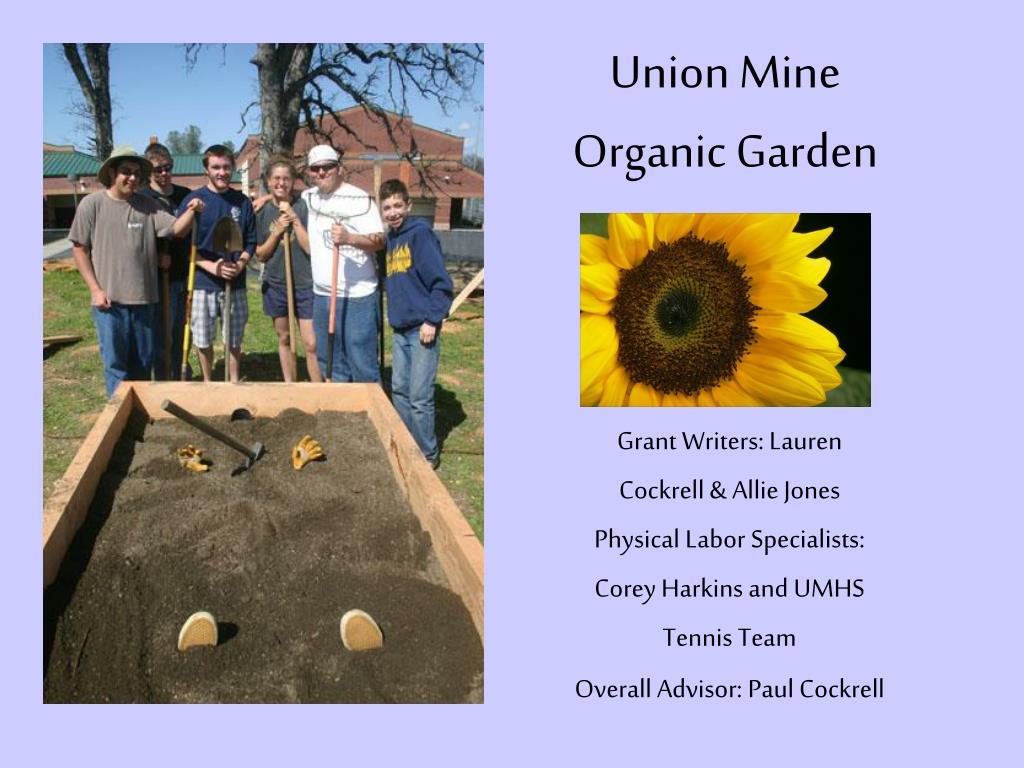 union mine organic garden l.
