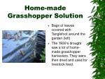 home made grasshopper solution