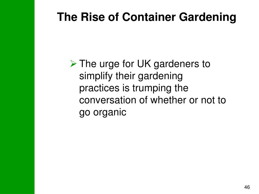 The Rise of Container Gardening