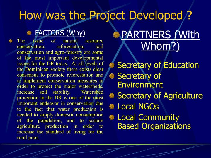 How was the project developed