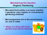 maintaining the garden organic gardening