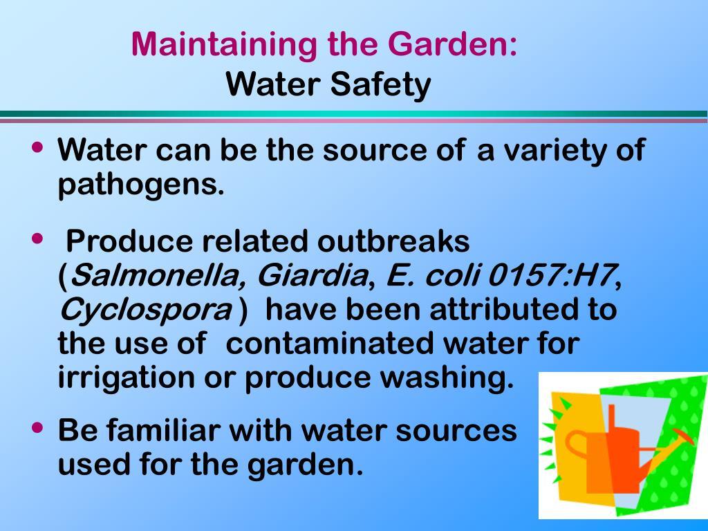 Maintaining the Garden: