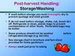 post harvest handling storage washing74