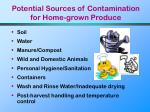 potential sources of contamination for home grown produce
