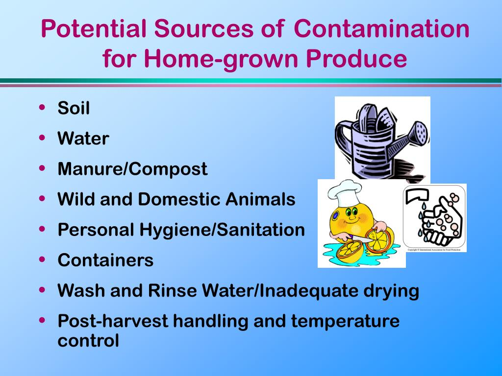 Potential Sources of Contamination for Home-grown Produce