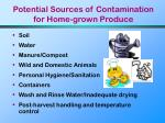 potential sources of contamination for home grown produce48