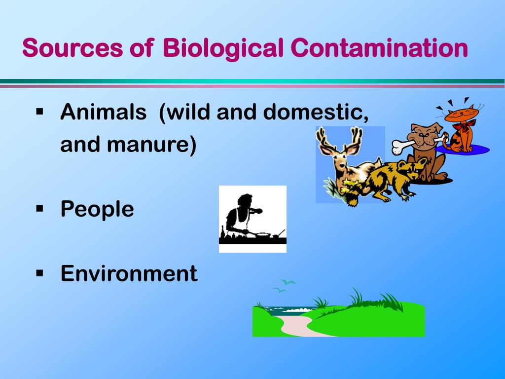 Sources of Biological Contamination