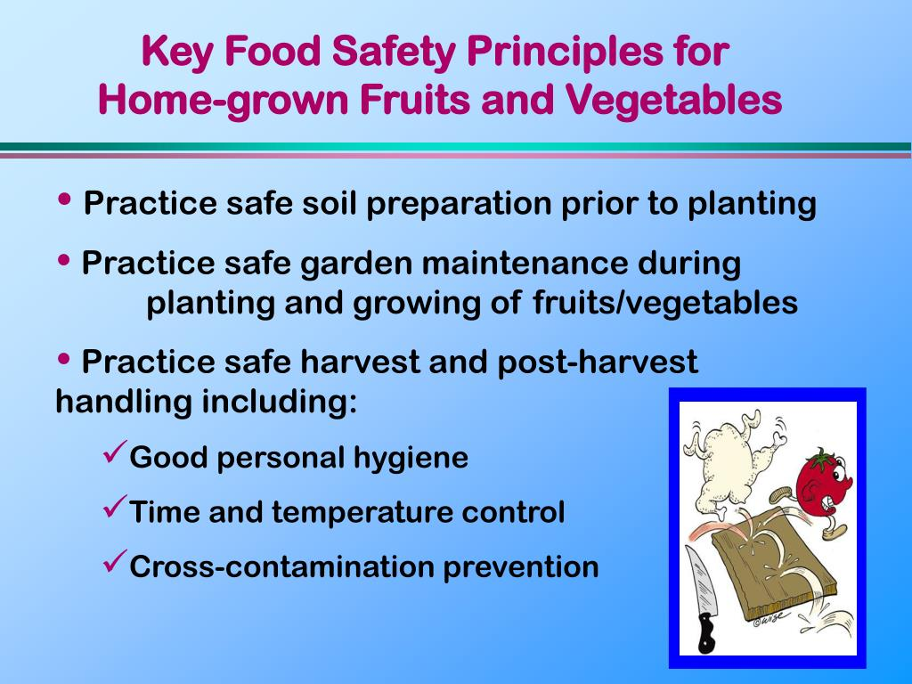 Key Food Safety Principles for