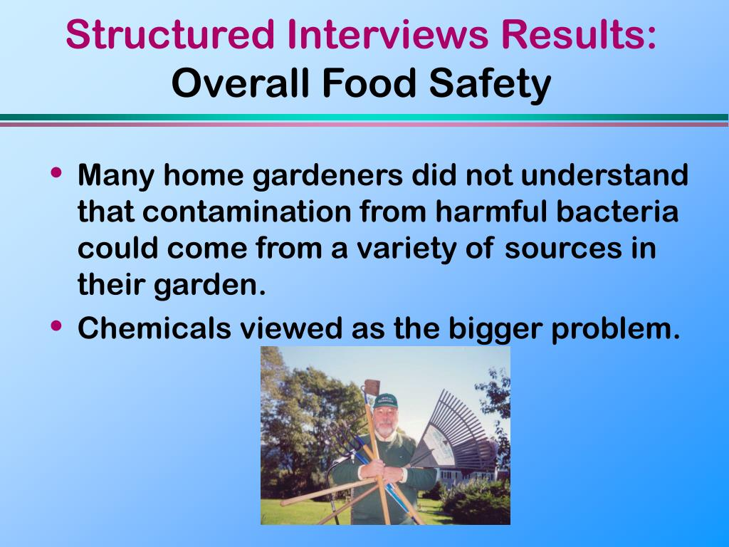 Structured Interviews Results: