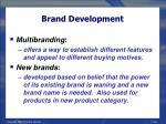 brand development38