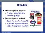 branding19