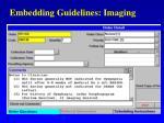 embedding guidelines imaging
