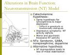 alterations in brain function neurotransmission nt model