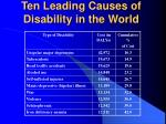 ten leading causes of disability in the world