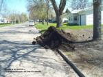 minimum measure 4 construction site runoff control24