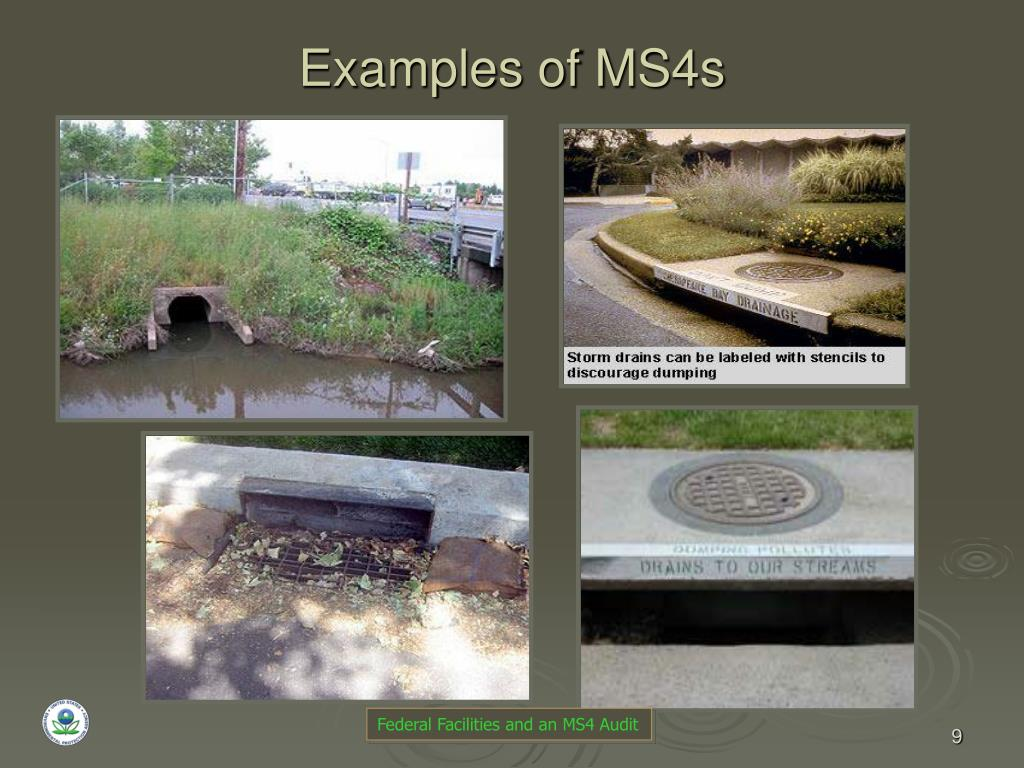 Examples of MS4s