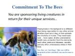 commitment to the bees