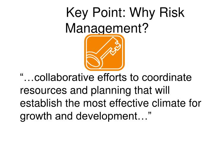 Key point why risk management