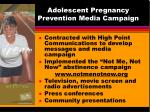 adolescent pregnancy prevention media campaign