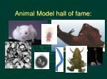 animal model hall of fame