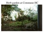 herb garden at commune hc