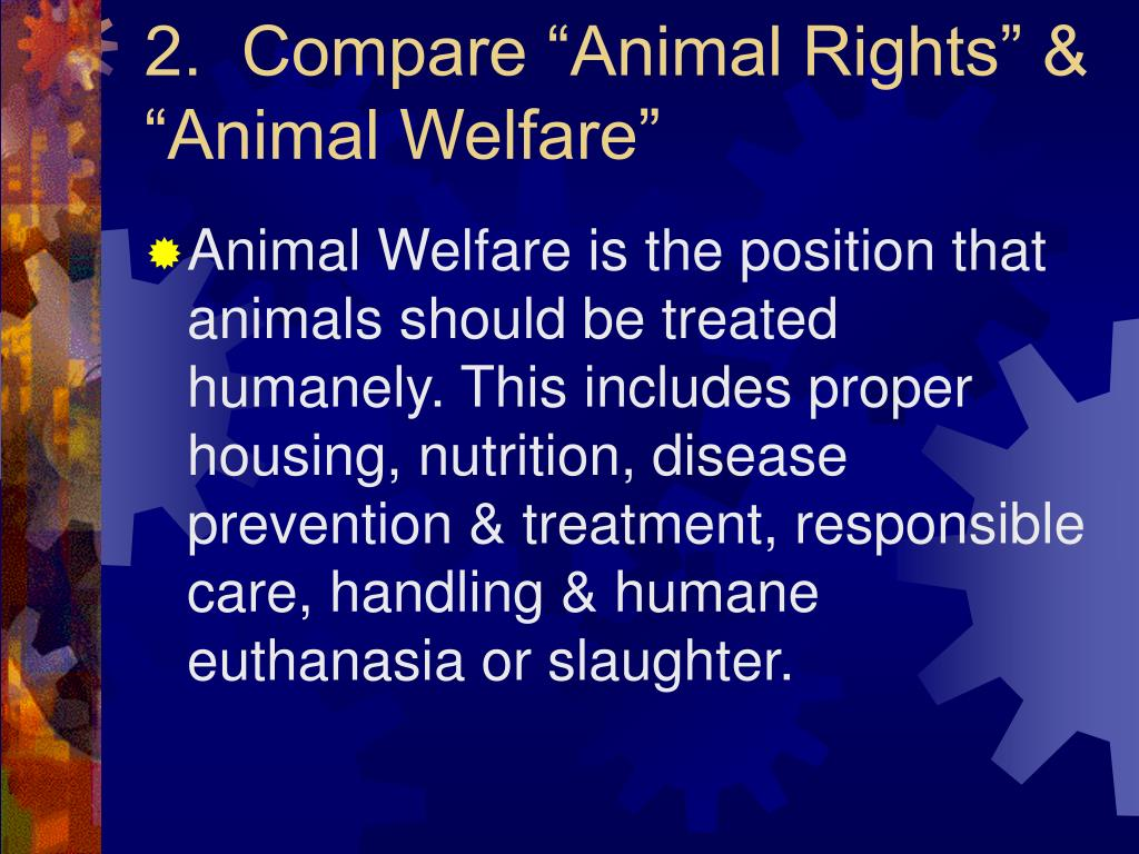 animal rights versus human rights In firmly endorsing animal welfare while rejecting animal rights there is no rational basis for saying that a human being has special rights.