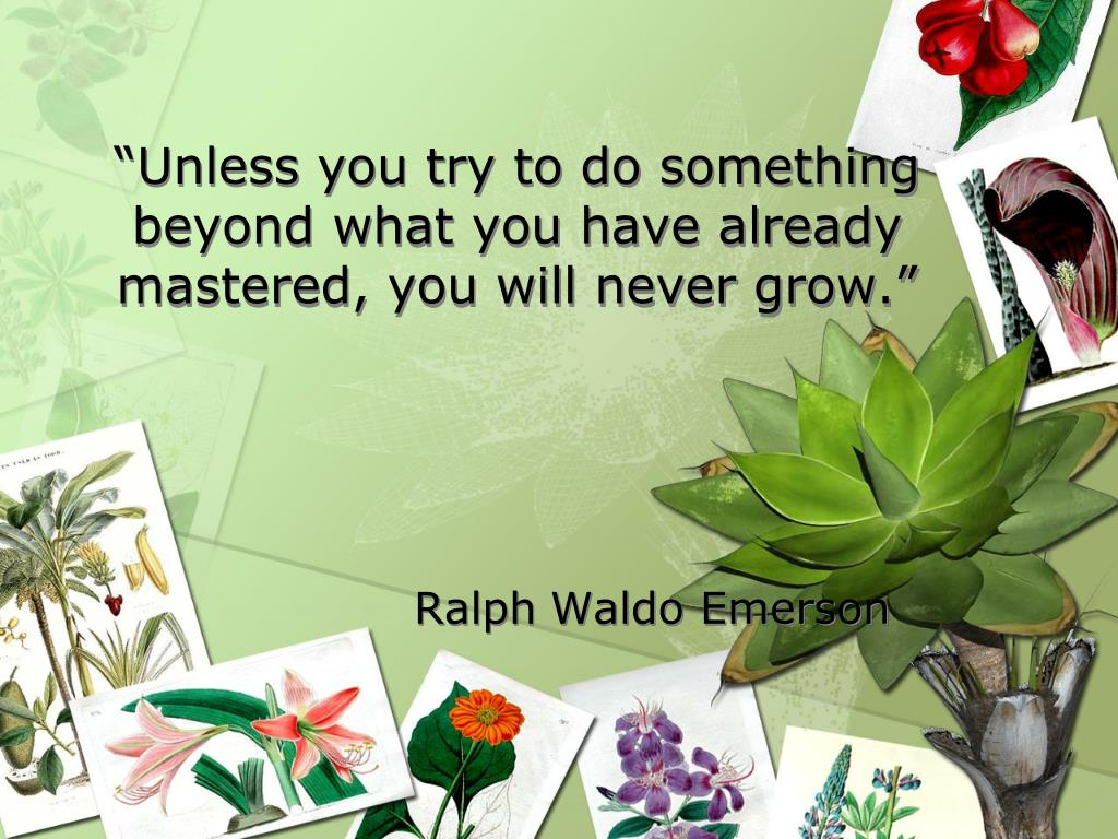 """""""Unless you try to do something beyond what you have already mastered, you will never grow."""""""