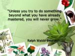 unless you try to do something beyond what you have already mastered you will never grow
