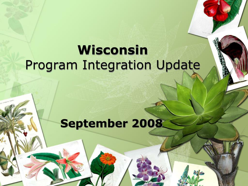 wisconsin program integration update l.
