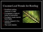 coconut leaf fronds for roofing