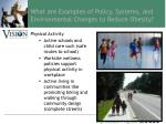 what are examples of policy systems and environmental changes to reduce obesity