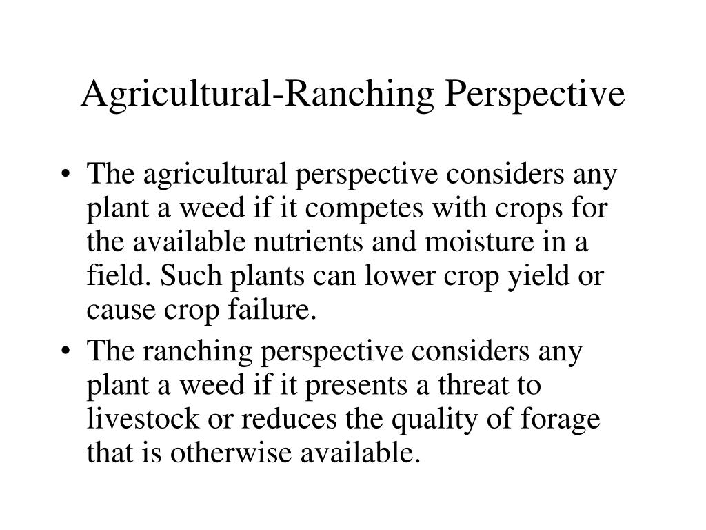 Agricultural-Ranching Perspective