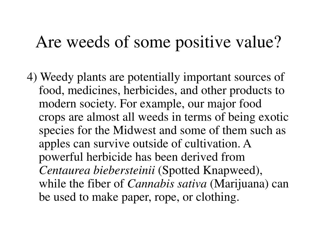 Are weeds of some positive value?