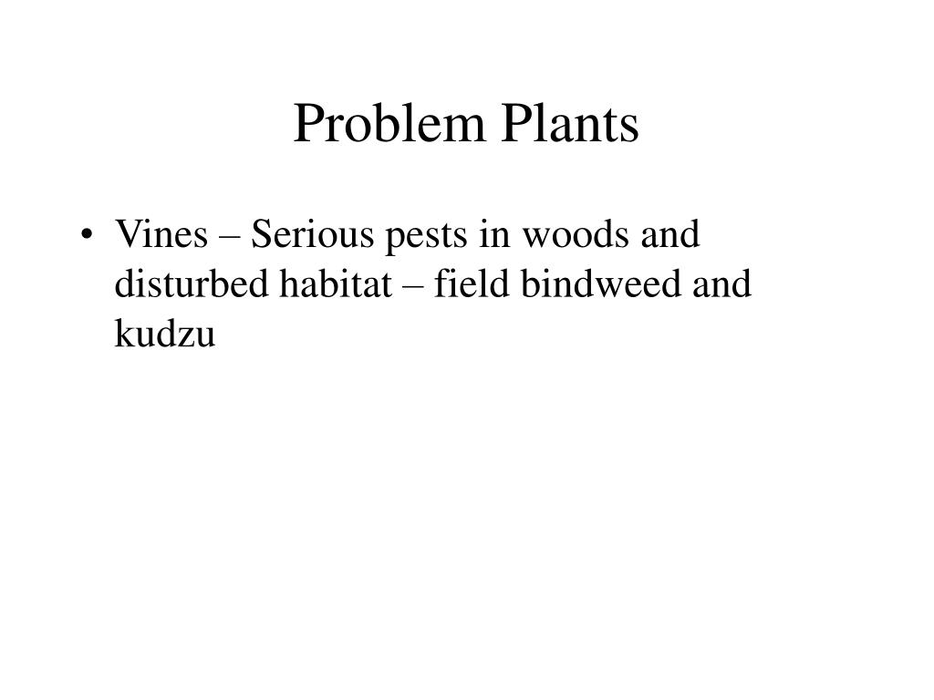 Problem Plants