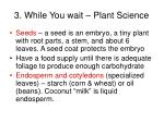 3 while you wait plant science