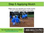 step 5 applying mulch