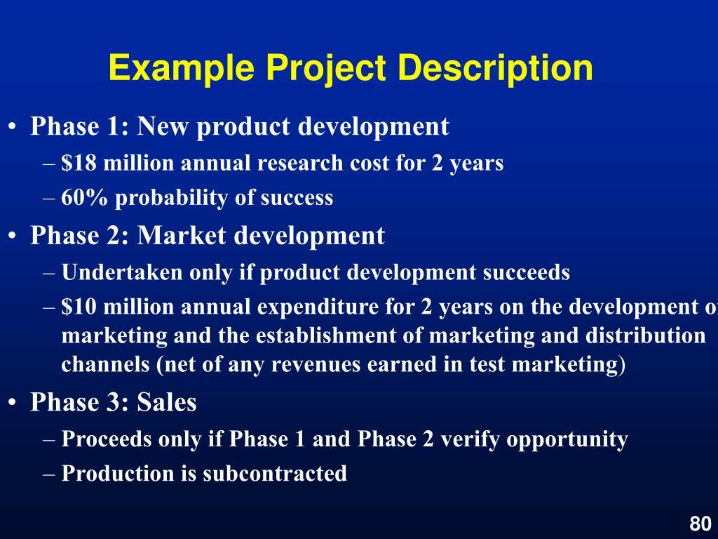 Example Project Description