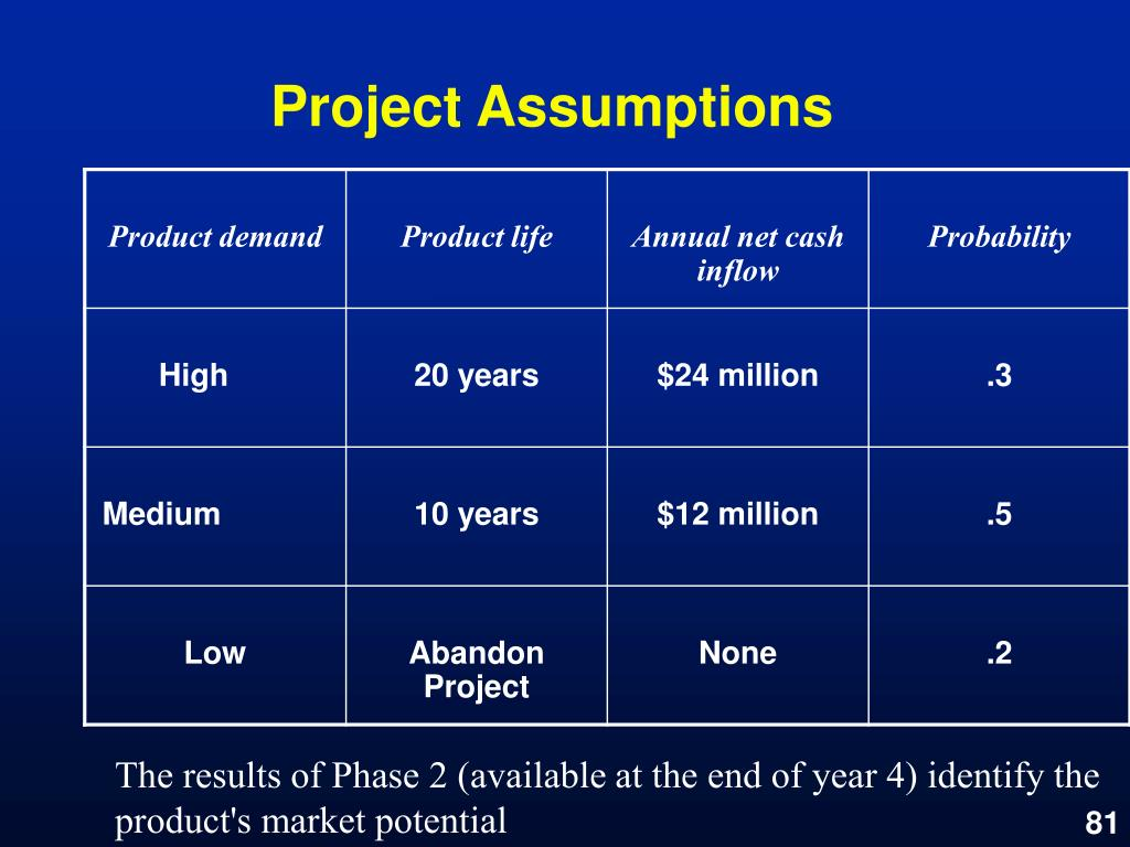 Project Assumptions