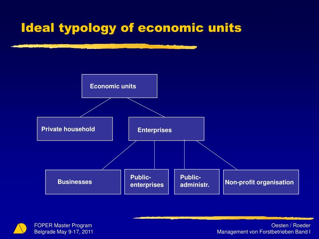 Ideal typology of economic units