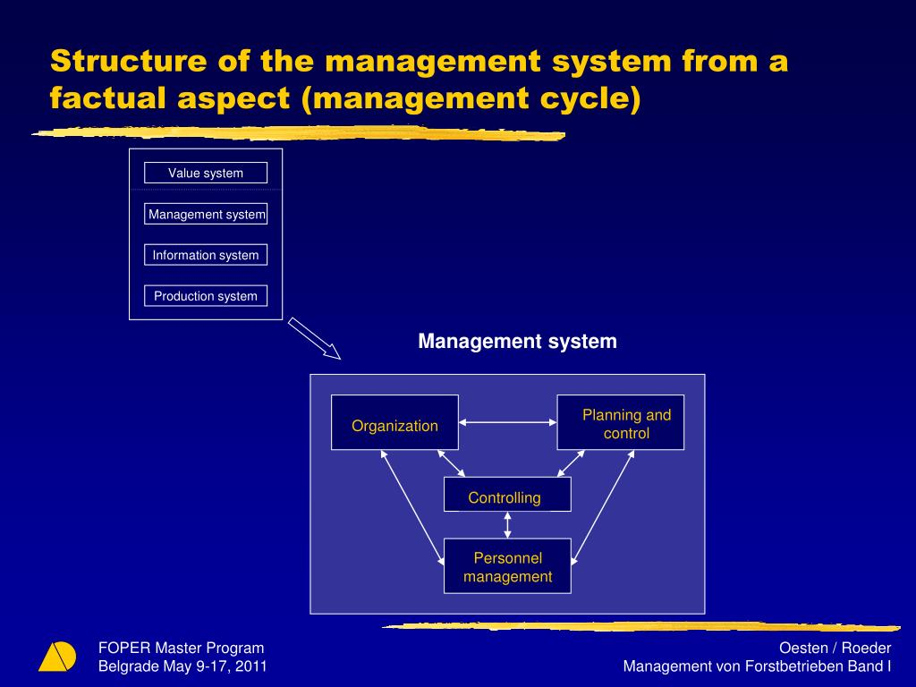Structure of the management system from a