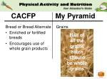 cacfp my pyramid