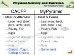 cacfp mypyramid