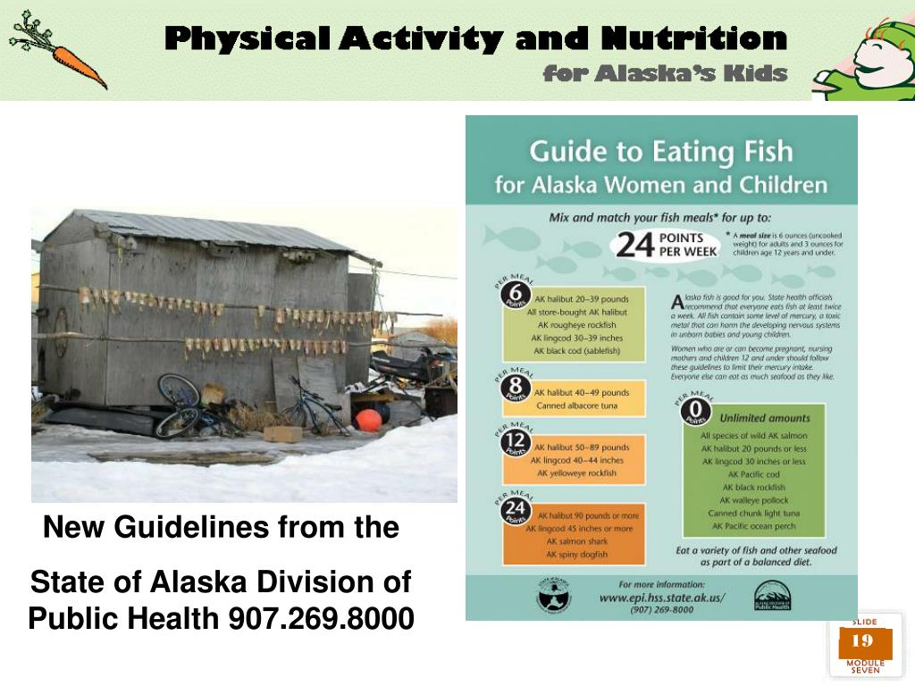 New Guidelines from the